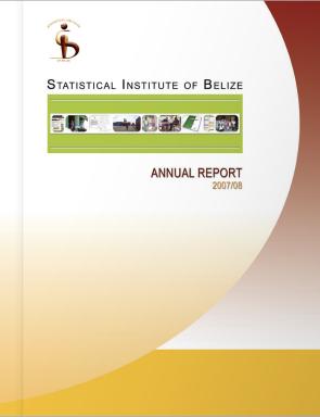 AnnualReport_2008
