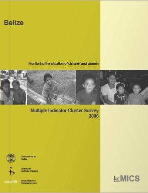 MICS_Main_Report_2006